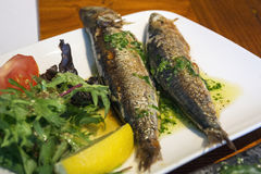 Two grilled fish on the plate with verdancy Stock Photography