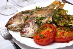 Two Grilled fish with vegetables and herbs Royalty Free Stock Image