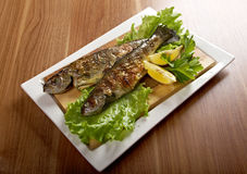 Two grilled Rainbow Trouts royalty free stock photography