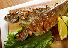 Two grilled Rainbow Trouts royalty free stock images