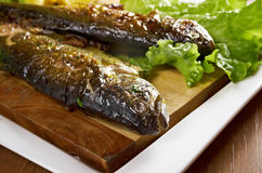 Two grilled Rainbow Trouts Stock Images