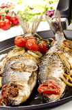 Two grilled sea bass Royalty Free Stock Photography