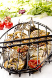 Two grilled sea bass Stock Photo