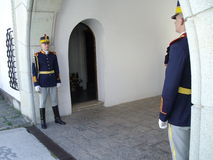 Two guards Stock Images