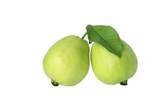 Two guava Royalty Free Stock Photography