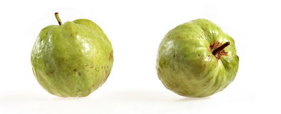 Two guavas Stock Photography