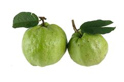 Two  guavas isolated Royalty Free Stock Photography