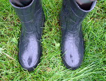 Two gumboots on the grass Royalty Free Stock Images
