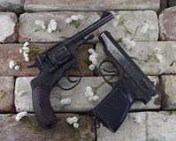 Two guns with flower petals Royalty Free Stock Photo