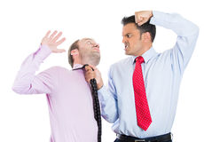Two guys, businessmen, a boss and his manager having a fight over contract issues, Royalty Free Stock Images