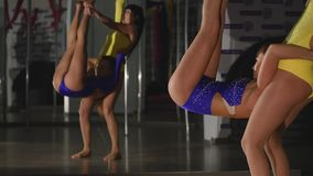 Two gymnasts doing stretching together stock video footage
