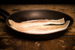 Two haddock fillets in frying pan Stock Image