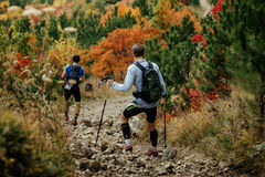 Two haikers descend from mountain trail. On background of red and yellow leaves of autumn forest Royalty Free Stock Photo