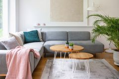 Two hairpin tables placed on carpet in real photo of white living room interior with fresh plant and modern poster. Concept stock photos