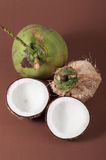 Two halfs of coconut Stock Photography