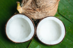 Two halfs of coconut  with shadow Stock Photos