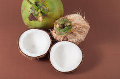Two halfs of coconut  with shadow Royalty Free Stock Photos