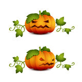 Two halloween pumpkin-01 Stock Photography