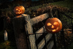 Two Halloween pumpkins sitting on fence Stock Images