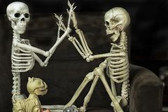 Halloween Skeletons getting ready to go trick or treating. Two Halloween Skeletons getting ready for the holiday royalty free stock photography