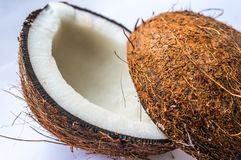 Two halves of coconut Royalty Free Stock Images