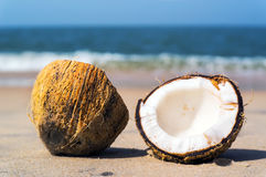 Two halves of cracked brown coconut on white sandy beach with turquoise sea background Royalty Free Stock Photo