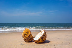 Two halves of cracked brown coconut on white sandy beach with turquoise sea background Royalty Free Stock Photography