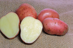 Two halves of cut red potatoes on burlap. Royalty Free Stock Image