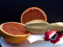 Two Halves of Grapefruit. Two halves of a grapefruit on a white plate with a wooden instrument. Black backgroung Royalty Free Stock Image