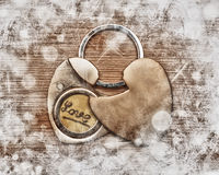 The two halves of the heart Stock Photos