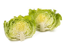The two halves of iceberg lettuce bunch isolated on white background Royalty Free Stock Image
