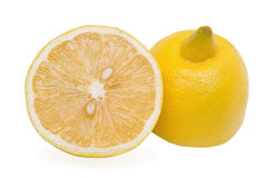 Two halves of lemon Stock Photography