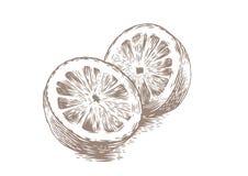Two halves of lemon Royalty Free Stock Photos