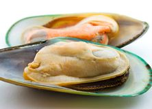 Two halves of mussels Stock Photos