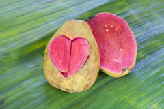 Two halves pink guava with carved heart Royalty Free Stock Images