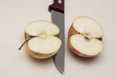 Two halves of a ripe apple Royalty Free Stock Images