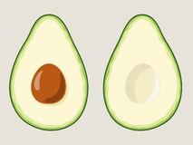 Two halves of sliced avocado with pit. Vector illustration. Stock Images