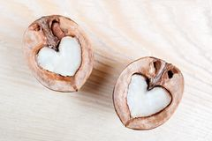 Two halves of walnut in shape of heart are lying on light textured wooden table. Royalty Free Stock Photography