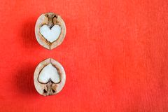 Two halves of walnut in shape of heart are lying over one another on red textured paper. royalty free stock photo