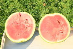 Two halves of watermelon Royalty Free Stock Photo