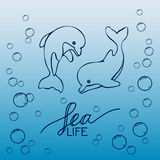 Two hand drawn baby dolphins, jumping on wave. Black and white. Royalty Free Stock Photo