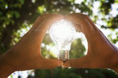 Two hand holding light bulb and sunset pass through big tree in. Nature, solar energy concept Stock Photography