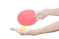 Two Hand Holding Table Tennis Bat And Ball Royalty Free Stock Photos