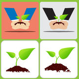 Two hand are planting Two leaf plant on soil Stock Photo