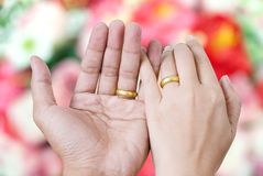 Two hand touch for love concept. Stock Photography