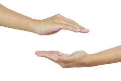 Two hands. Empty hand show something Royalty Free Stock Photos
