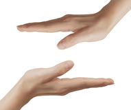 Two hands. Stock Photo