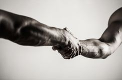 Two hands, arm, helping hand of a friend. Handshake, arms. Friendly handshake, friends greeting. Teamwork and royalty free stock images