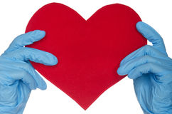 Two hands in blue medical gloves and heart. On white background royalty free stock images