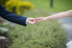 Two hands. Bride and groom and there two hands Royalty Free Stock Images